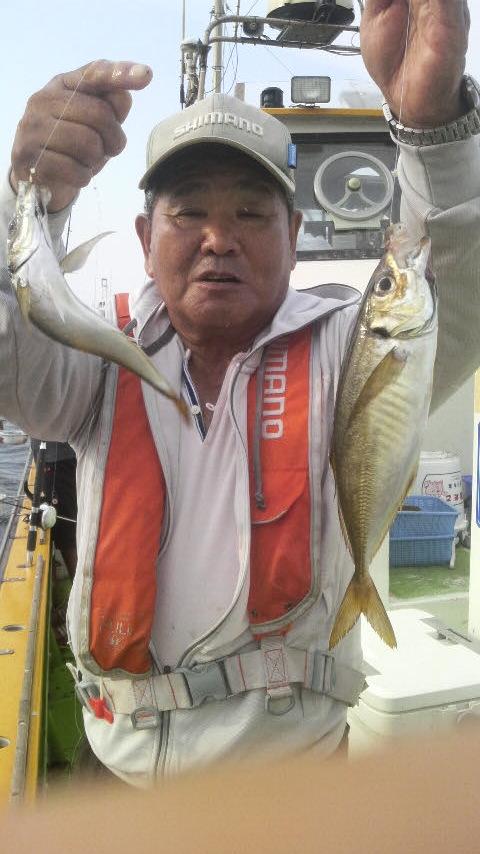 東京湾のマアジで〜す…
