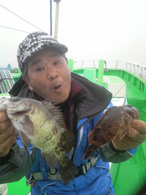 エビメバルにシロギス釣りに〜