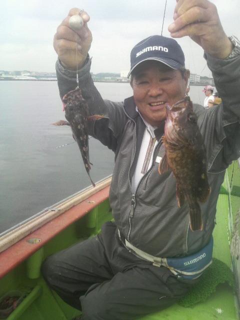 東京湾のカサゴさんですよ〜