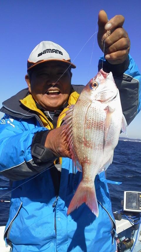 今日は剣崎沖の海で…