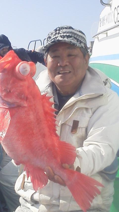 アコウ釣りに…
