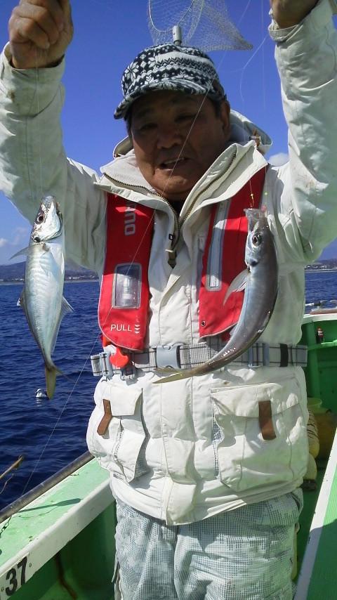 今日は…アジ釣りですよー