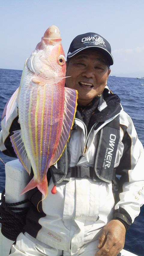 錦江湾の…乗っ込みマダイ…