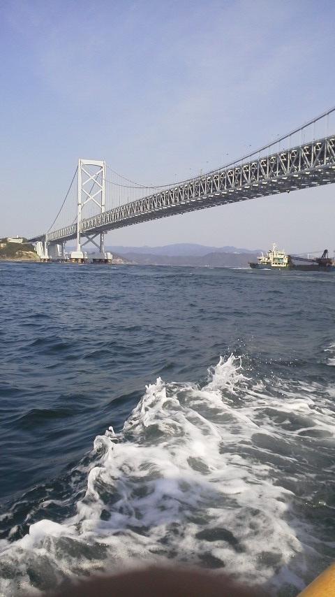 徳島鳴門のマダイ大名釣り……
