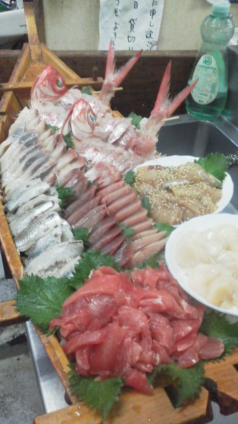 マダイ釣り鯛よう〜〜