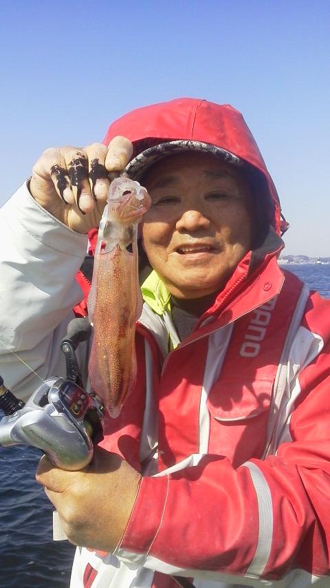 京浜大津・小川丸のマルイカ釣りに…