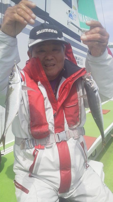 マダイ釣りが…マアジ釣りに…