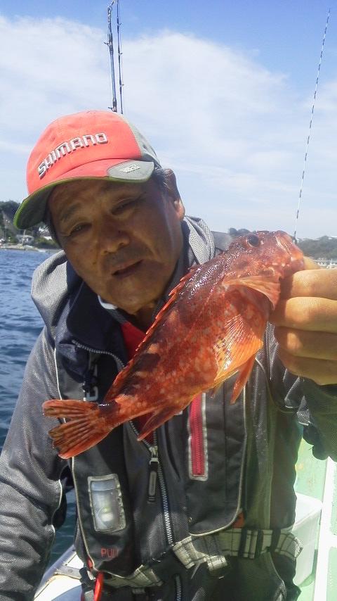 剣崎・大松丸のマダイ釣りに……