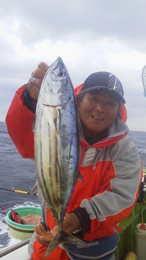 カツオ釣りで…もしかしたらキハダ…