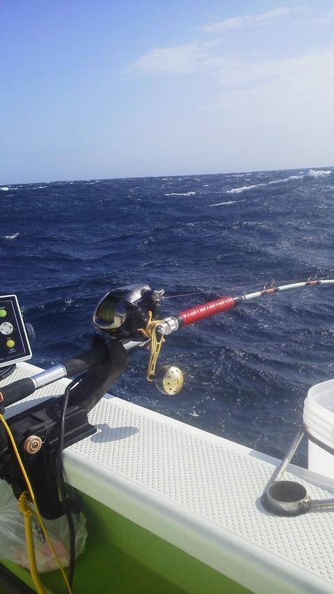 今日も続けて…ワラサ釣りに…