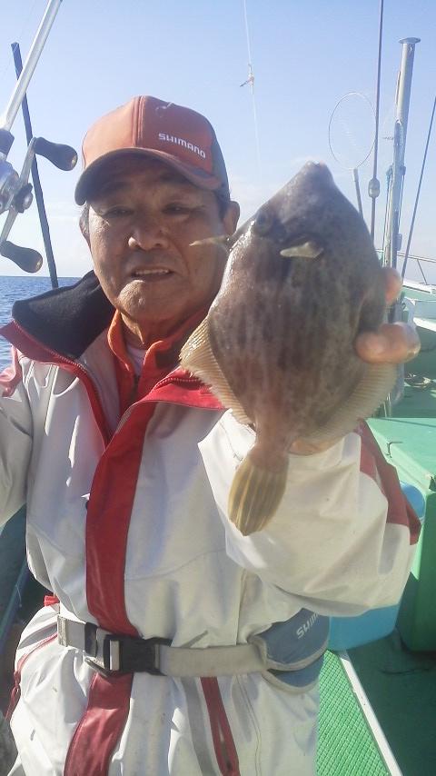 カワハギ釣りに〜