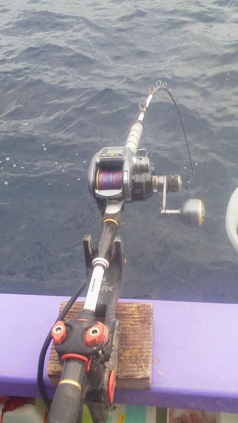 久しぶりのマダイ釣りに…