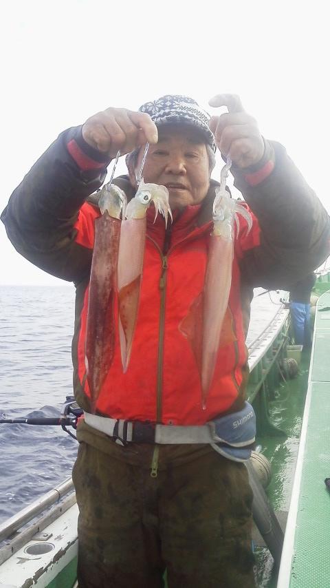 ヤリイカが釣りに……