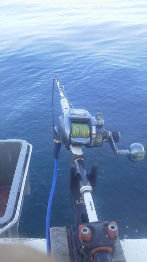 マダイ釣りに…