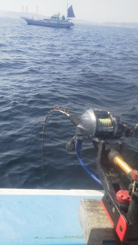 乗っ込み前のマダイ釣りに…