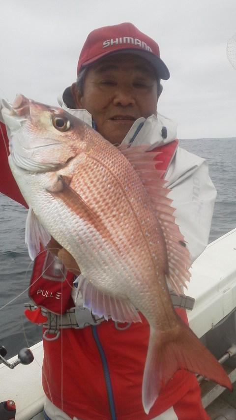 新潟名立港沖のマダイ釣り…