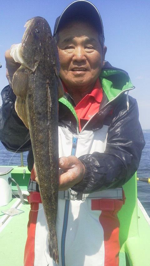 マゴチ釣りに……