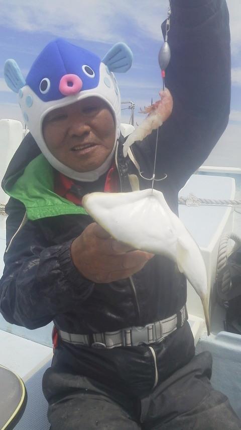 ショウサイフグ釣りですが…