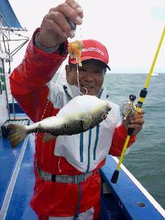 ショウサイフグ釣りに…