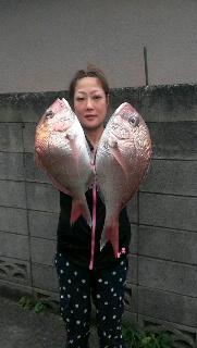 葉山沖のマダイ五目釣りの攻略法…