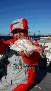 初釣りに…マダイです…