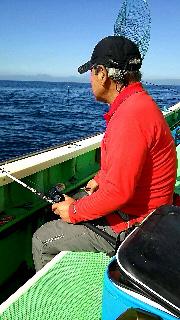 アオリイカ釣りに……