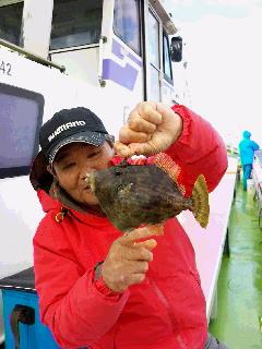 カワハギ釣りの取材