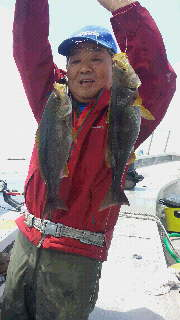 青物…マダイ五目釣りに…