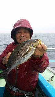 激ウマイサキ釣りに…